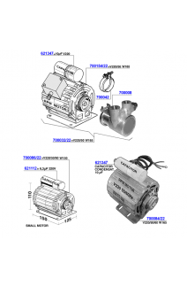 Pavoni - Motors and rotary pumps
